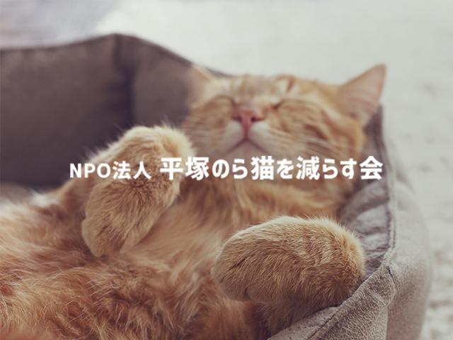 平塚のら猫を減らす会_ic