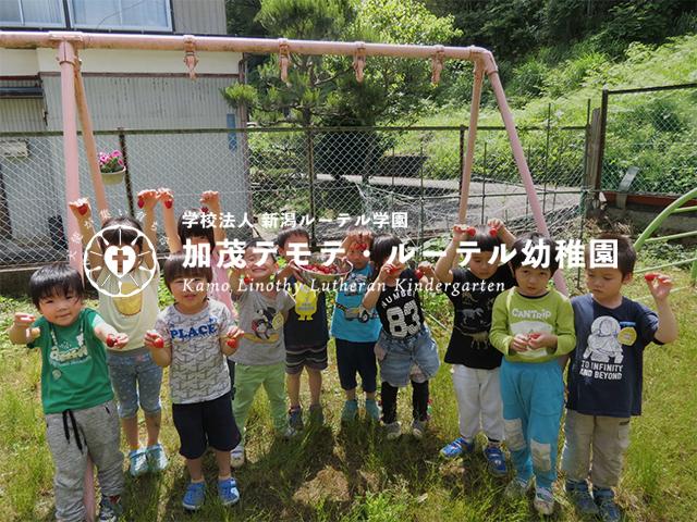 加茂テモテ・ルーテル幼稚園_ic
